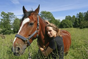 Equine Services- Massage Therapists, Bodywork, Myofascial Release, Rehabilitation- Maryland