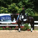 Riding- Equine Rehabilitation in Maryland
